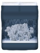 Cottonwood Trees With Frost Duvet Cover