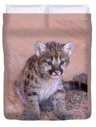 Cougar Kitten Duvet Cover