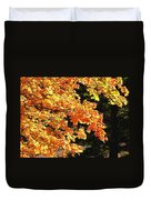 Country Color 26 Duvet Cover