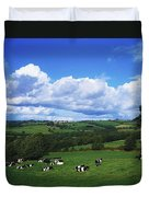 County Tipperary, Ireland, Dairy Cattle Duvet Cover