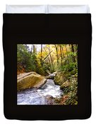 Courthouse River In The Fall 2 Duvet Cover