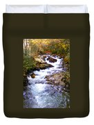 Courthouse River In The Fall Filtered Duvet Cover
