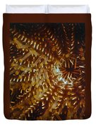 Crown Of Thorns Starfish Duvet Cover