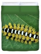 Cup Moth Limacodidae Caterpillar On Leaf Duvet Cover