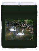 Curious Swans Duvet Cover