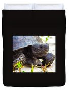 Curious Turtle Duvet Cover