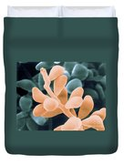 Curvularia Geniculata Duvet Cover