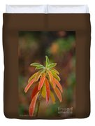 Cushion Spurge Duvet Cover