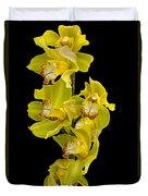 Cymbidium - Boat Orchid Duvet Cover
