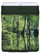 Cypress Trees Cross A Waterway Duvet Cover