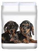 Dachshund Pups Duvet Cover