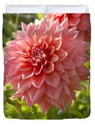 Dahlia Dahlia Sp Beverly Fly Variety Duvet Cover