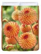 Dahlia Dahlia Sp Mirella Variety Flowers Duvet Cover