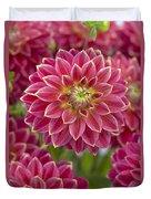 Dahlia Dahlia Sp Optimist Variety Duvet Cover