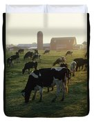 Dairy Cattle Grazing Duvet Cover