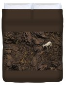 Dall Sheep Were Is Very Adapt Duvet Cover