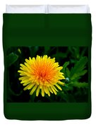 Dandy Among Daisies Duvet Cover