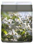 Dazzling Sunlit White Spring Dogwood Blossoms Duvet Cover