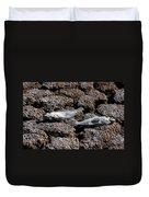Salton Sea Dead Tilapia Duvet Cover