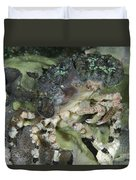 Decorator Crab, Indonesia Duvet Cover