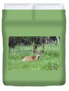 Deer At Rest Duvet Cover