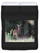 Deer - Doe - Nearing The Edge Duvet Cover