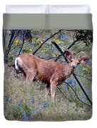 Deer Standing In Wildflowers Duvet Cover