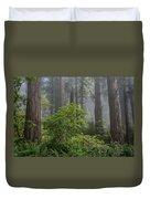 Del Norte Redwoods Duvet Cover