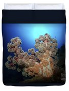 Dendronephthya Soft Coral, Acasta Reef Duvet Cover