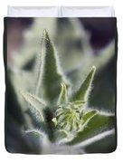 Desert Sunflower Geraea Canescens Bloom Duvet Cover