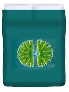 Desmid Algae Duvet Cover