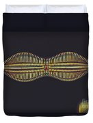 Diatom - Diploneis Crabro Duvet Cover