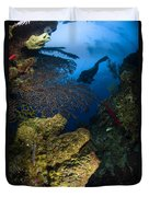 Diver Swims Over A Reef, Belize Duvet Cover