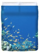 Divers Enjoy The Beauty Of The Reefs Duvet Cover