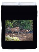 Doe And Twin Fawns Duvet Cover