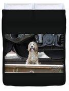 Dog Under A Train Wagon Duvet Cover