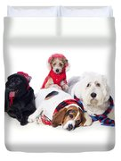 Dogs Wearing Winter Accessories Duvet Cover