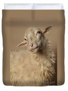 Domestic Sheep Duvet Cover