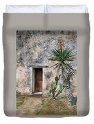 Door In Spanish Mission Building Duvet Cover