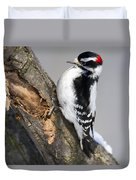 Downy Woodpecker Perched In A Tree Duvet Cover