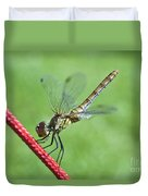 Dragonfly On A String Duvet Cover