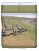 Ducks In Flight V3 Duvet Cover