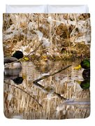 Ducks Reflect On The Days Events Duvet Cover