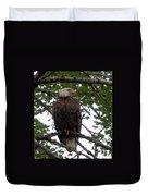 Eagle At Hog Bay Maine Duvet Cover