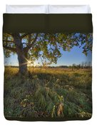 Early Evening Under An Old Poplar Tree Duvet Cover
