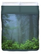 Early Morning In The Forest, Humboldt Duvet Cover
