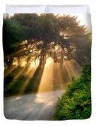Early Morning Sunlight Duvet Cover