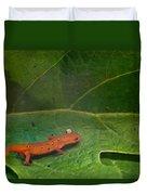 Easterm Newt Nnotophthalmus Viridescens 14 Duvet Cover