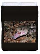Eastern Blue-tongue Skink Threat Display Duvet Cover
