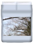 Eastern Bluebird - Old And Alive Duvet Cover